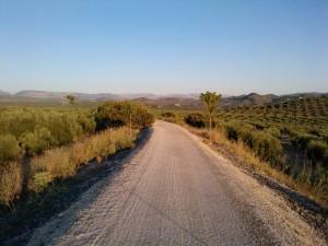 Vía Verde del Aceite Jaén